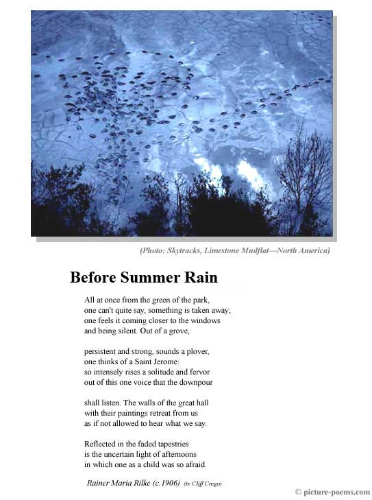 poem commentary before summer rain Poems - find the best poems by searching our collection of over 8,000 poems by classic and contemporary poets, including maya angelou, emily dickinson, robert frost, juan felipe herrera, langston hughes, sylvia plath, edgar allan poe, william shakespeare, walt whitman, and more.